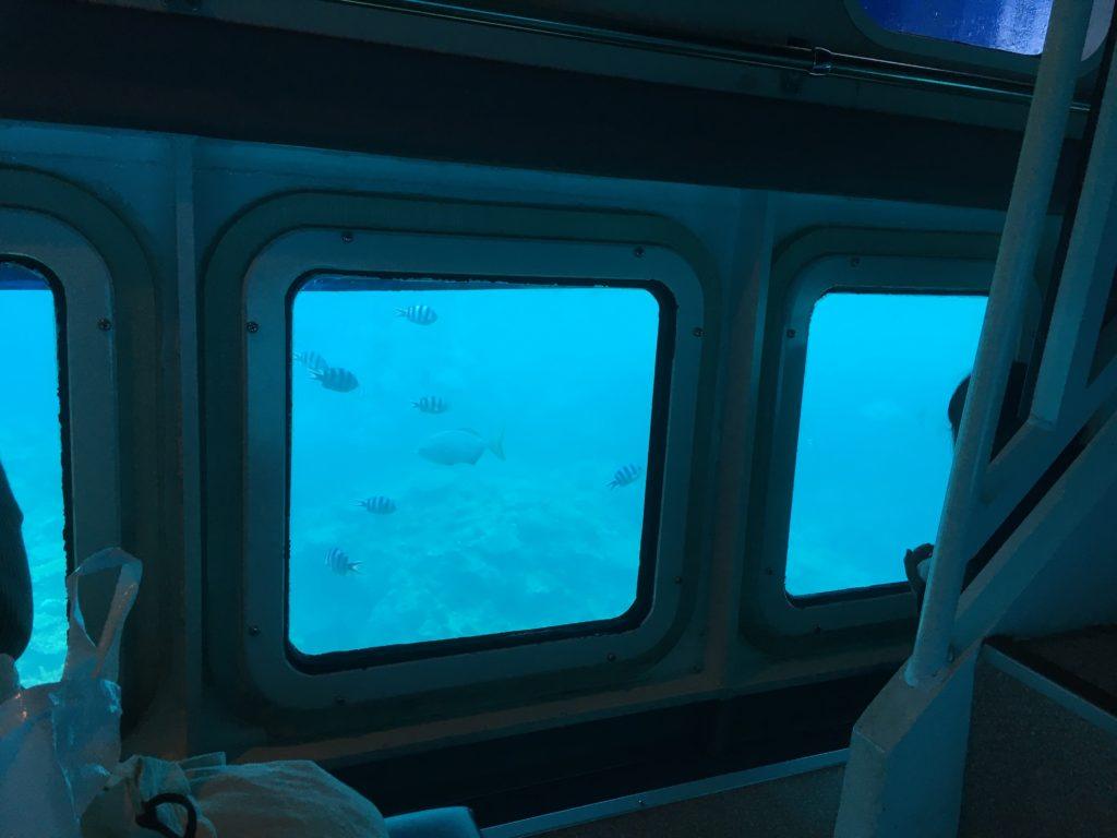 ルネッサンスリゾートオキナワ・クマノミ号水中