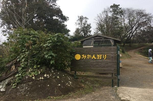 東京ドイツ村みかん狩り入口
