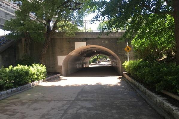隅田公園・公園内