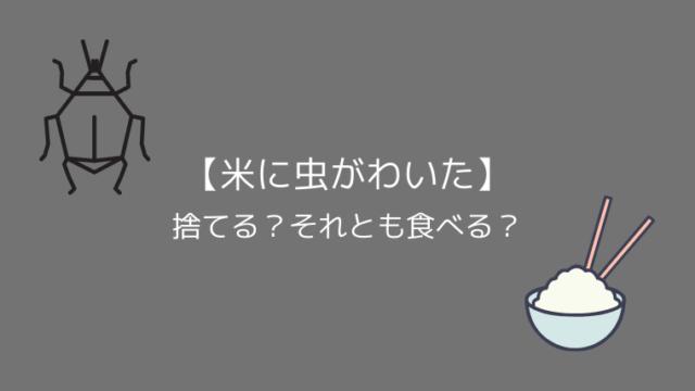 【米に虫がわいた】捨てる?それとも食べる?
