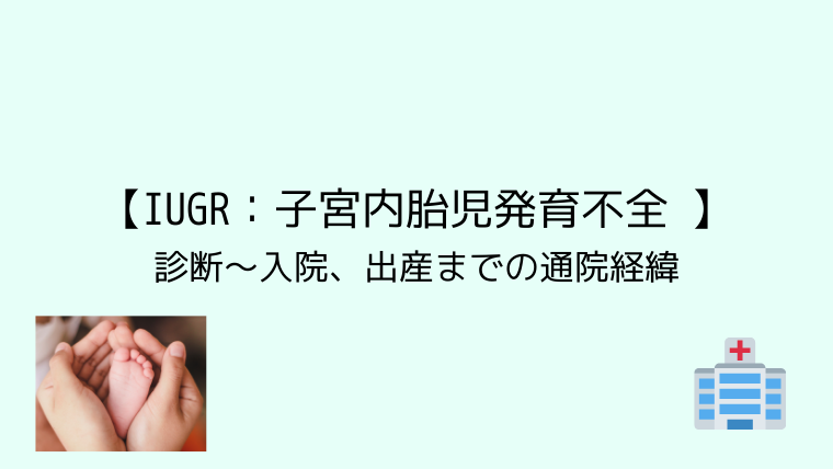 【IUGR:子宮内胎児発育不全 】診断~入院、出産までの通院経緯